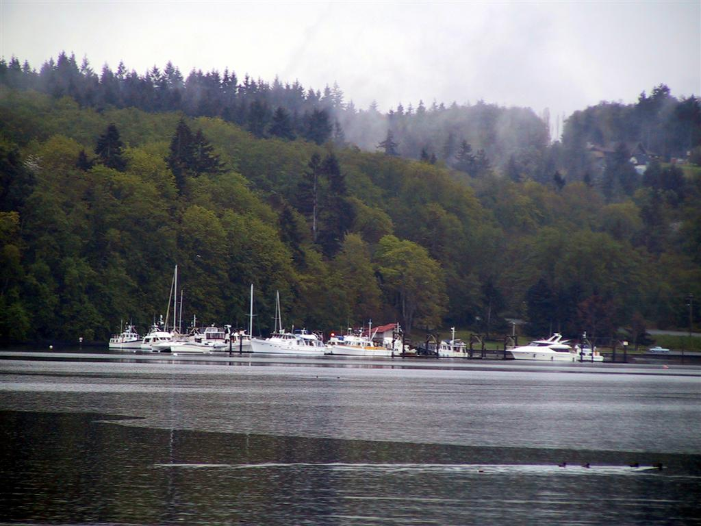 Quartermaster harbor vashon island vashon island has many parks and two of those accessible from the water are in quartermaster harbor pictured is dockton park operated by king county nvjuhfo Choice Image
