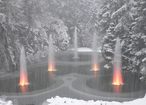 Butchart Gardens during snowstorm